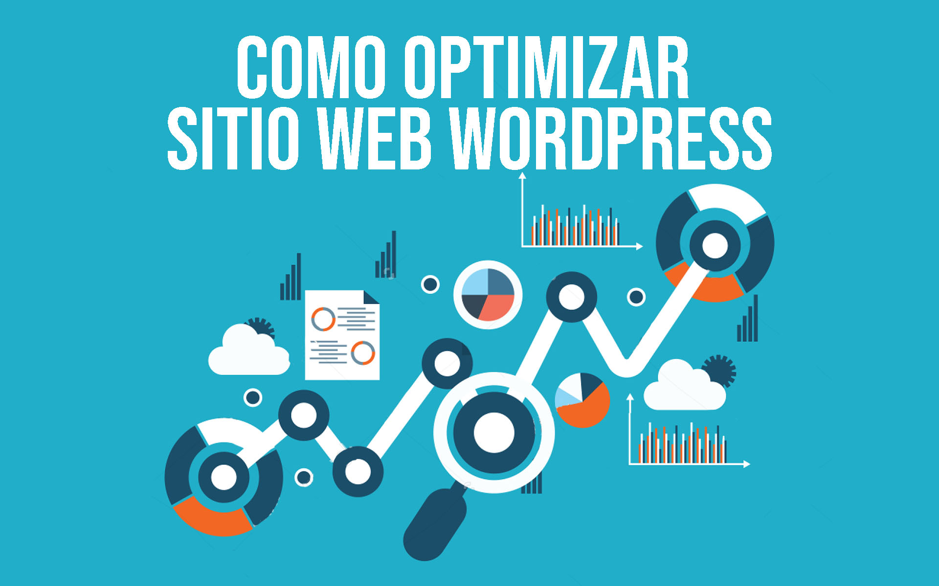 optimizar pagina web wordpress