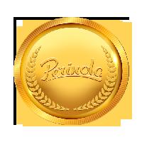 Paquete premiun de Redes sociales